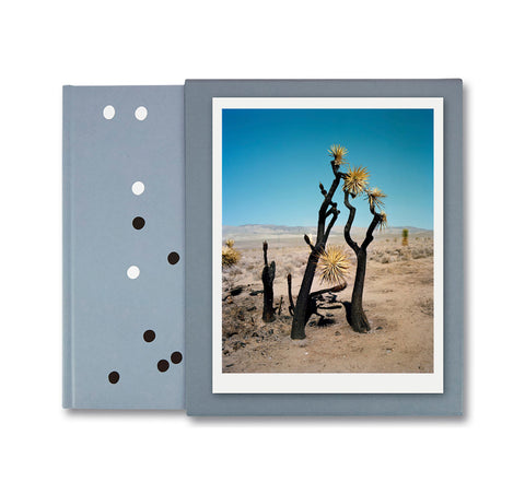 ZZYZX by Gregory Halpern [SPECIAL EDITION (TREE)]