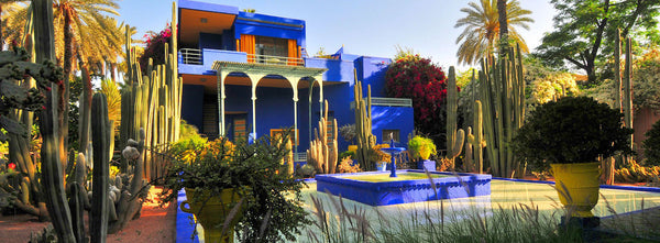 Jardin Majorelle in Marrakesh, Morocco.
