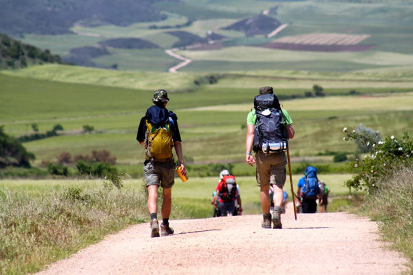 A group of backpackers walking the Road to Santiago.