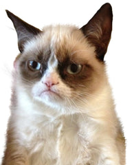 Sticker - Grumpy Cat