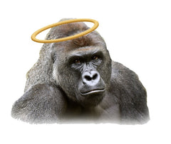Sticker - Harambe Precious Angel