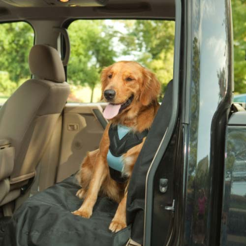 Dog Travel Harness - Johnny's Pet Supply