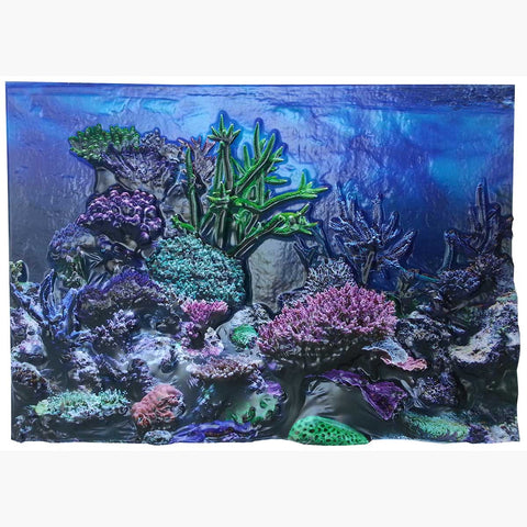 "BioBubble 3D Background Coral Reef 20 gallons 24"" x 12"" - Johnny's Pet Supply"