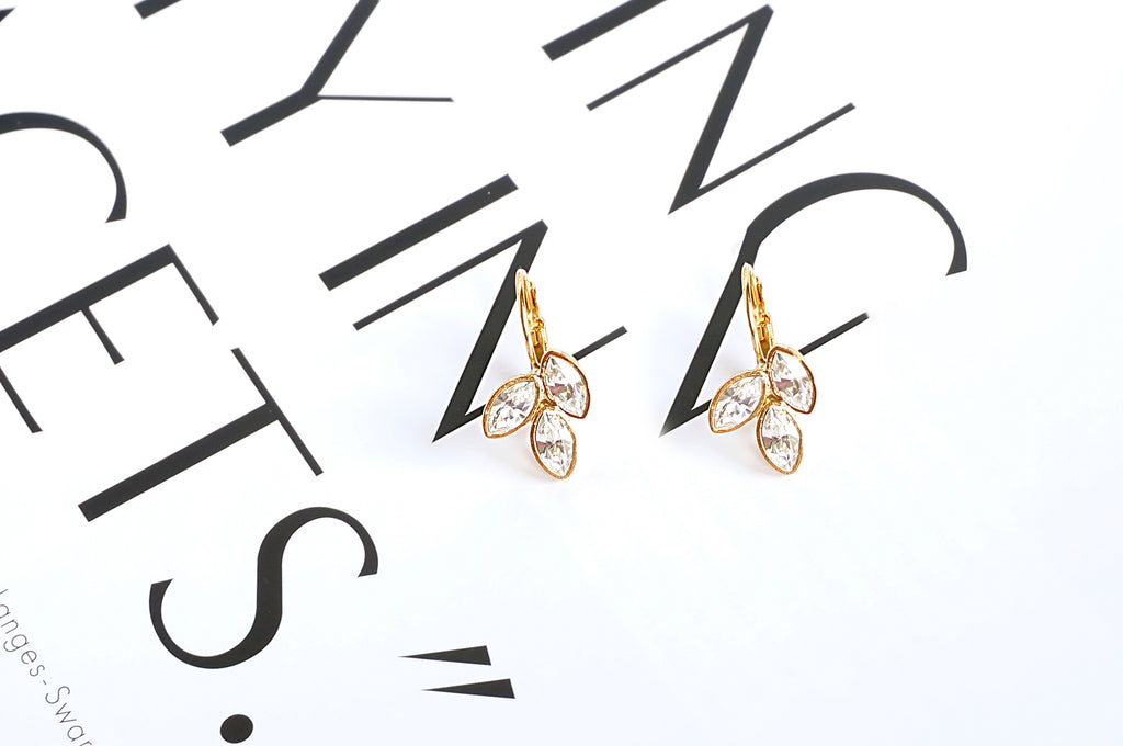 Leverback fashion earrings divus allergy free