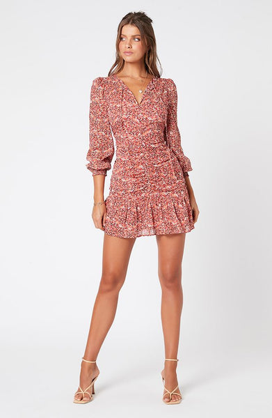 Heirloom Blossom Mini Dress - Multi