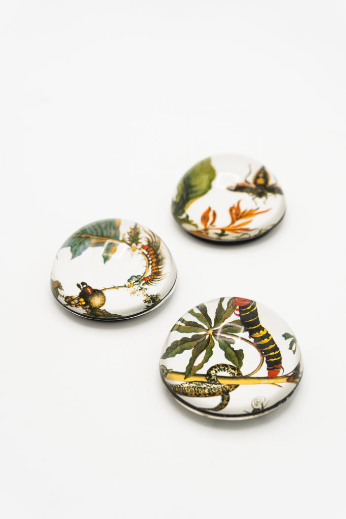 Botanical Art Cabochon Magnet - Set of Three