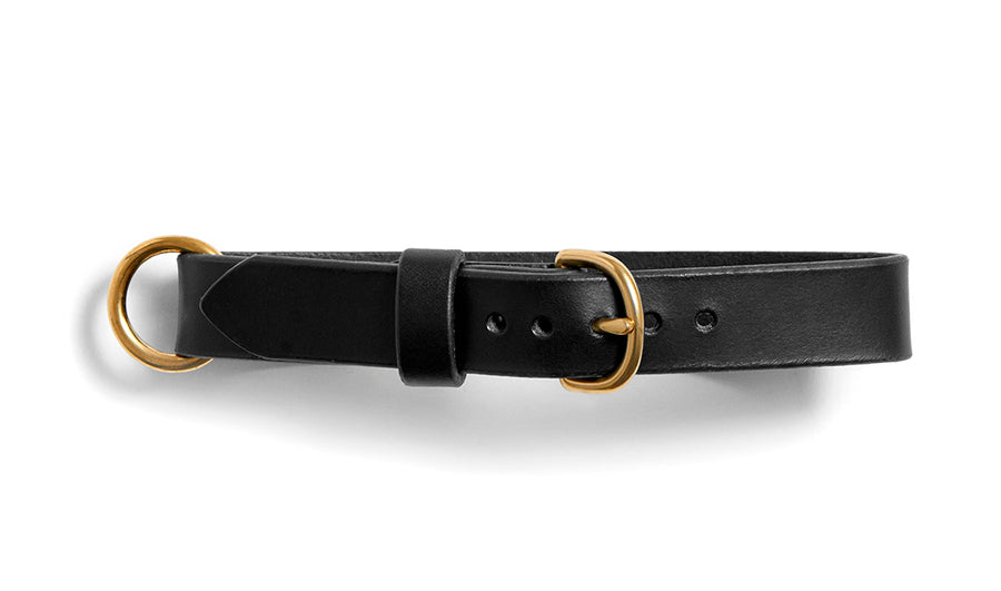 MESTER dog collar (black)