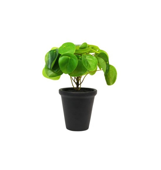 Faux Chinese Money Potted Plant