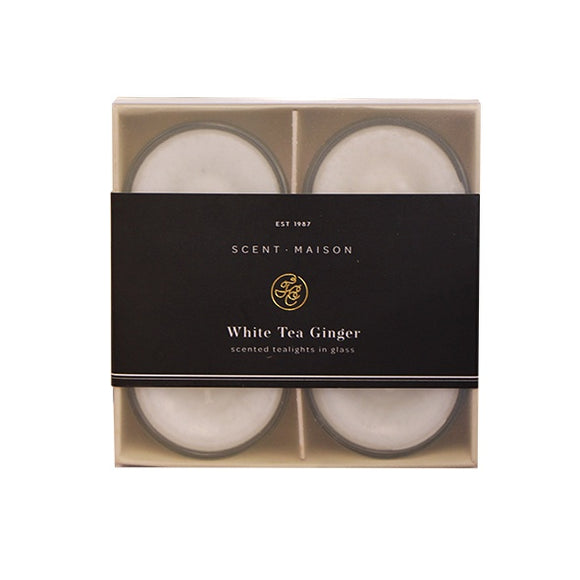 Maison Glass Tealights - White Tea Ginger