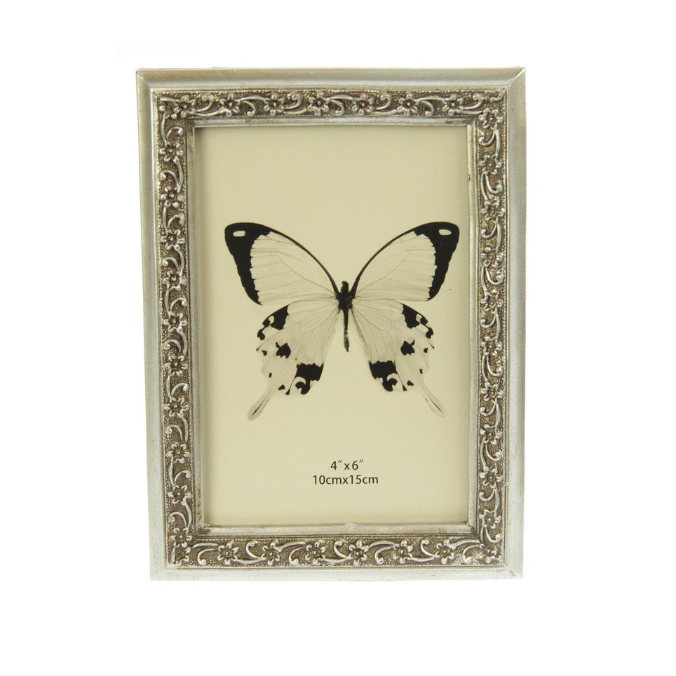 Photo Frame- Trailing Daisy Edge Champagne