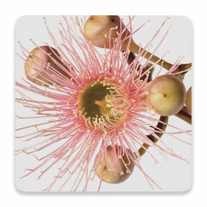 Flourish Pink Floral Ceramic Coaster