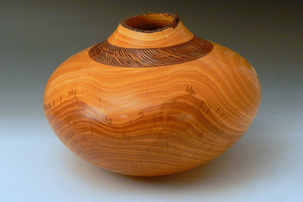 Honey Locust Natural Edge Carved Hollow Vessel