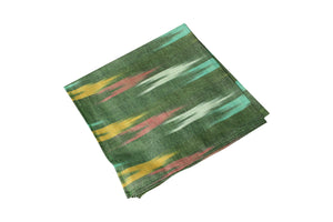 Green Ikat Cloth Napkin- Set of 2