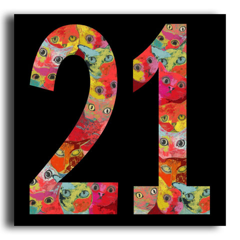 '21' cat birthday card (PK19)