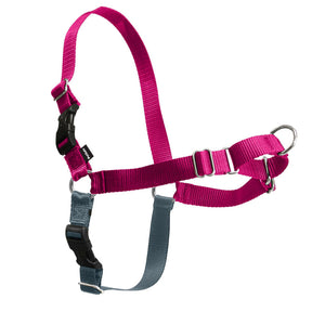 Easy Walk - No Pull Harness - Woofur Natural Pet Products