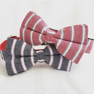 LWD - Grey & Blue Stripe Collar - Chubbs Bars,  - pet shampoo, Woofur Natural Pet Products - Chubbs Bars Company, Woofur Natural Pet Products - Chubbs Bars Canada