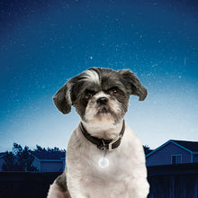 Load image into Gallery viewer, NiteIze - PetLit Collar Light - Chubbs Bars,  - pet shampoo, Woofur Natural Pet Products - Chubbs Bars Company, Woofur Natural Pet Products - Chubbs Bars Canada