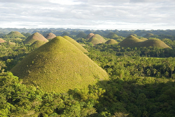 VERA DE NERO: Chocolate Hills, Bohol, Philippines