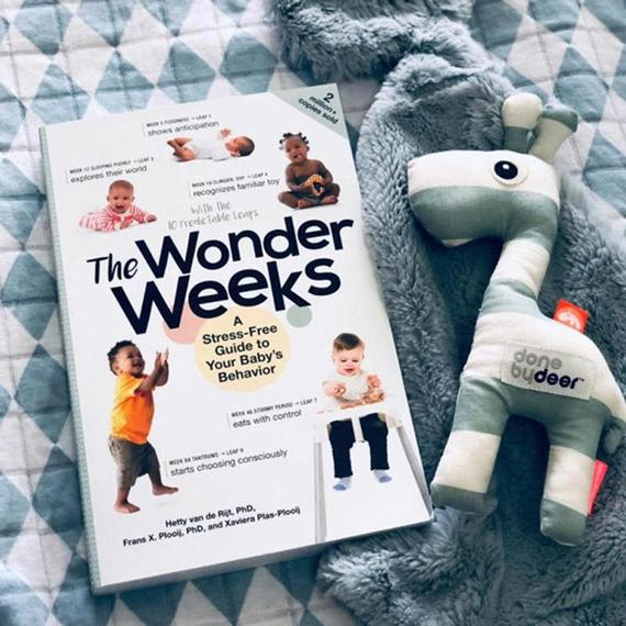 What's New | The Wonder Weeks - A Guide Book for New Parents