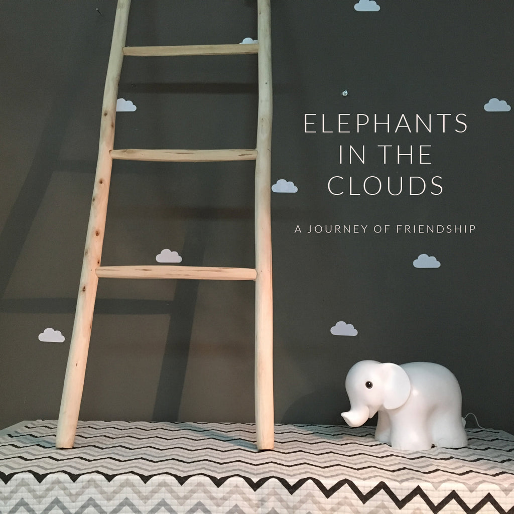 Series  //  Elephants In The Clouds