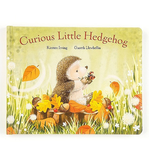 Curious Little Hedgehog