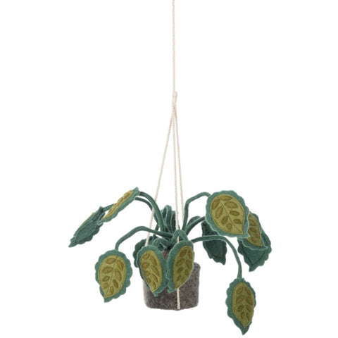 Plant Felt Hanging Big Leaves