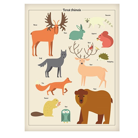 Poster 50 x 70 Forest Animals