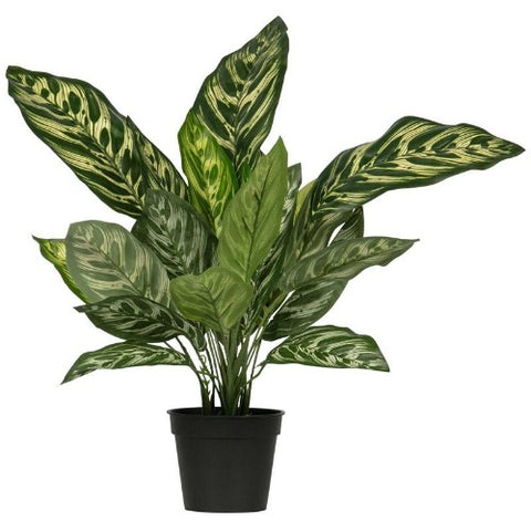 Artificial Plant Aglaonema