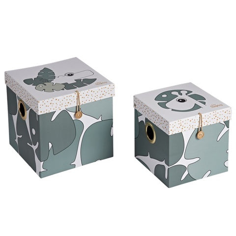 Box Set (2 pcs) Large Tiny Tropics