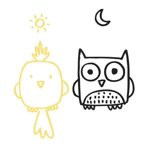 Wall Decal Owl and Bird