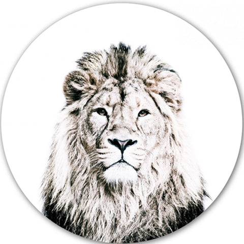 Magnetic Wall Decal Lion