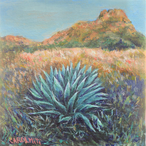Agave at the base of the Rocks Mini-Painting, NiciArt