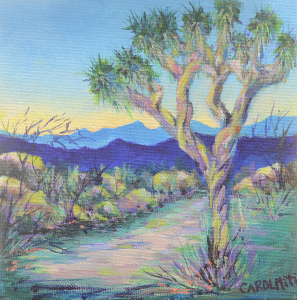 Joshua Tree in Evening Light modern Impressionistic Theme