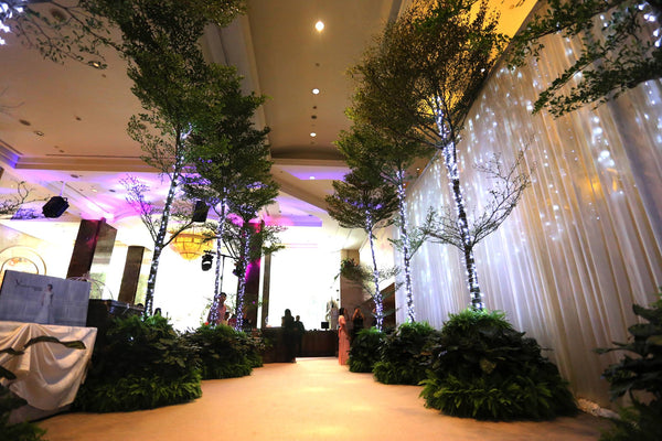 Ground to ceiling trees display