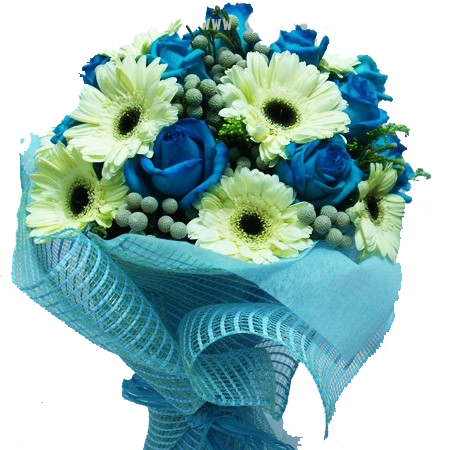 HB002 - White Gerbera with Blue Roses