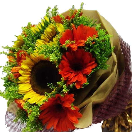 HB008 – Sunflower and Red Gerbera