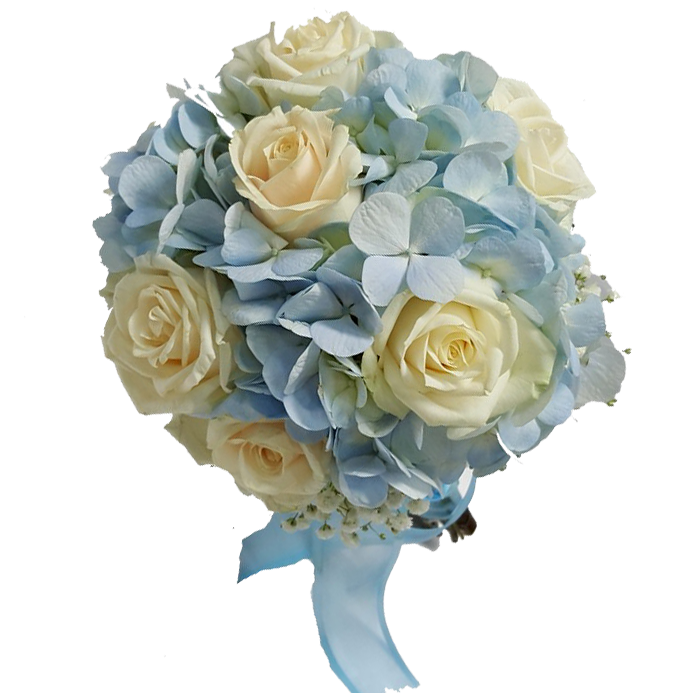 HYDRANGEA AND WHITE ROSE