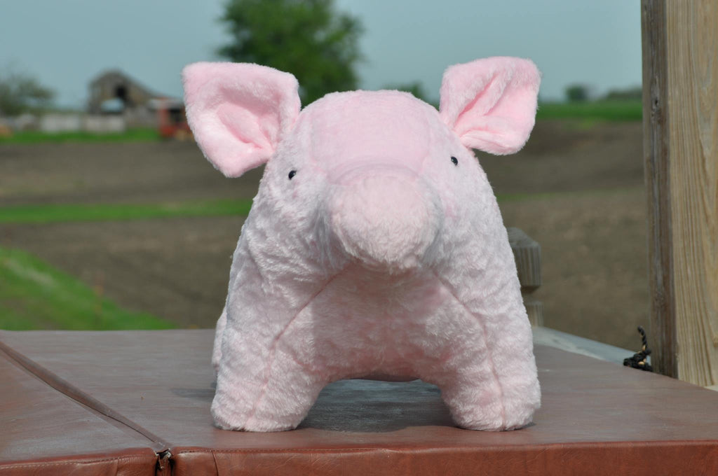 Stuffed Pigs toy