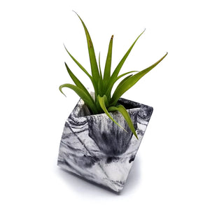Triangular Planter