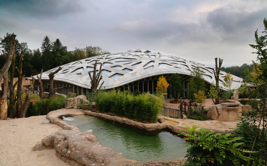 Architektur im Zoo