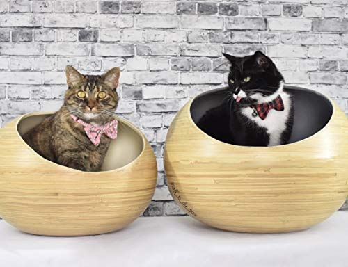 バンブー猫用ファンシーベッド Fhasso Stylish Igloo Cat Cave Bed - Luxury Bamboo Cat Beds  - Eco-Friendly Pods - Washable Cushioned Nest, Prestige Kitten Cozy House - Zacca store
