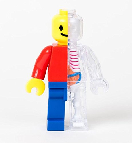 ジェイソン・フリーニー 解剖フィギュア レゴ 4D Master Brick Man Funny Anatomy by Jason Freeny - Zacca store