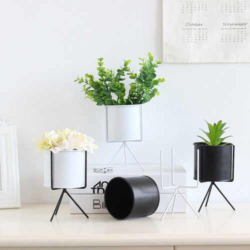 Modern Mini Ceramic Planter Decor - Zacca store