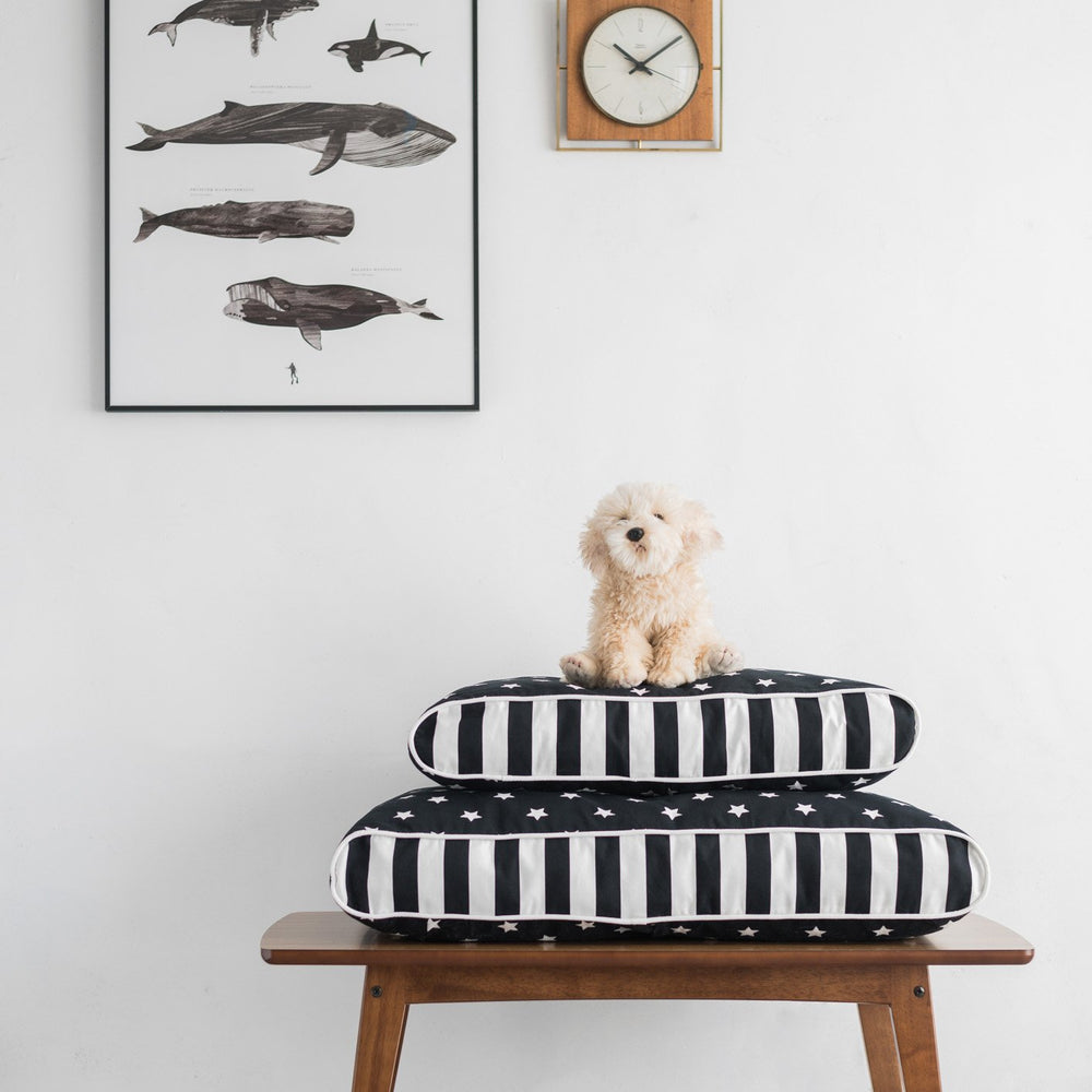 PET BED MAX - Zacca store