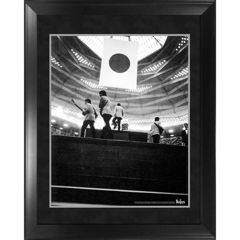 Through the Years: 1966  A Fan's Perspective Framed Photo