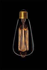 Squirrel Cage Edison Filament Bulb - E27 60W