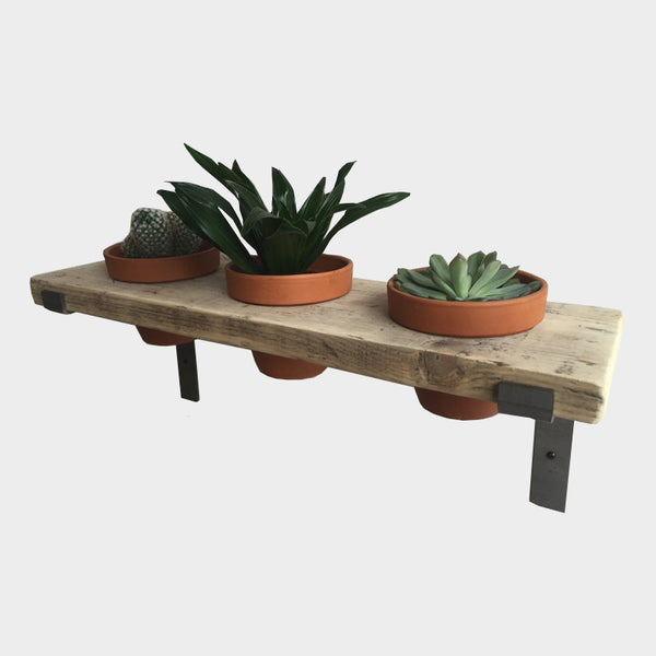 Industrial Style Plant Pot Shelf - Steel, Wood & Ceramic