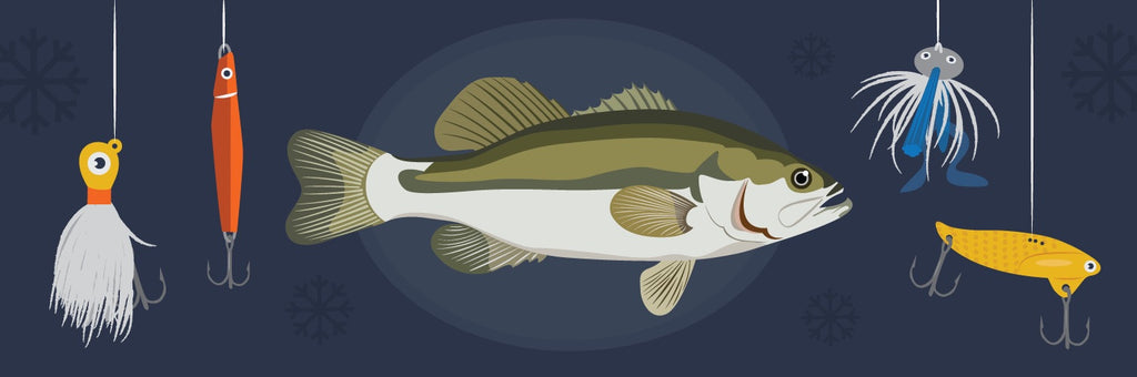 Winter Bass Fishing Strategies