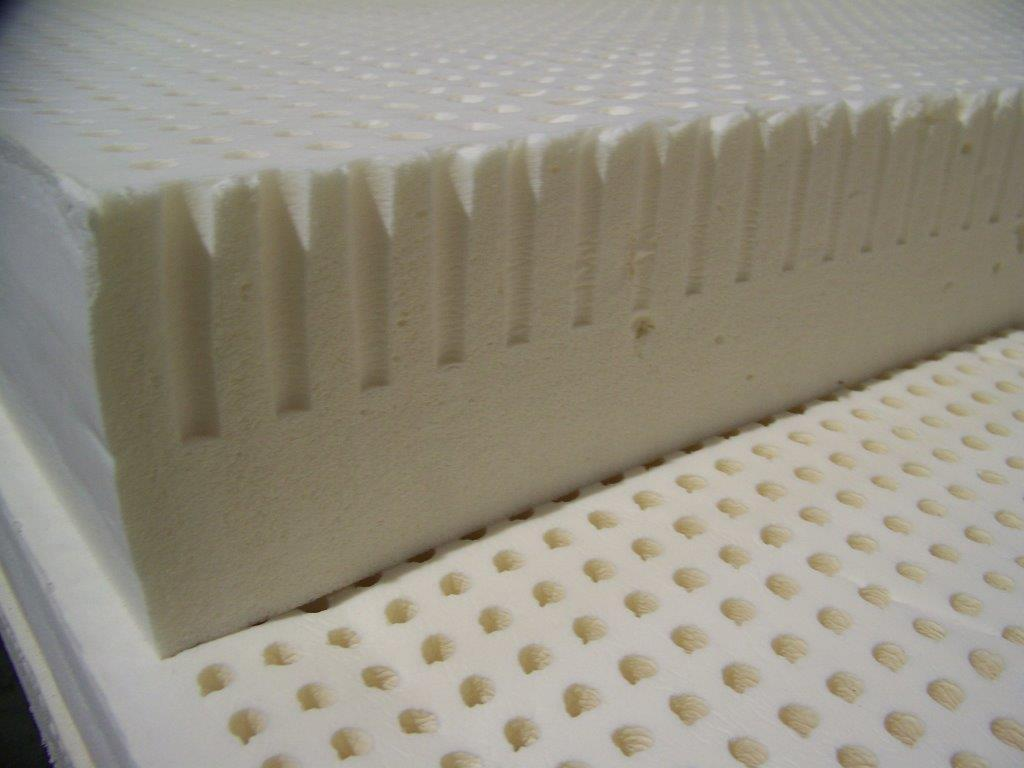 100% Natural Dunlop Latex (6-inch)
