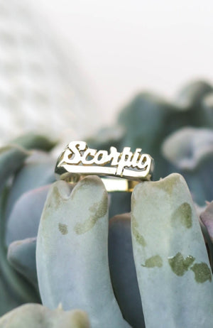 Snash Scorpio Zodiac Brass Ring